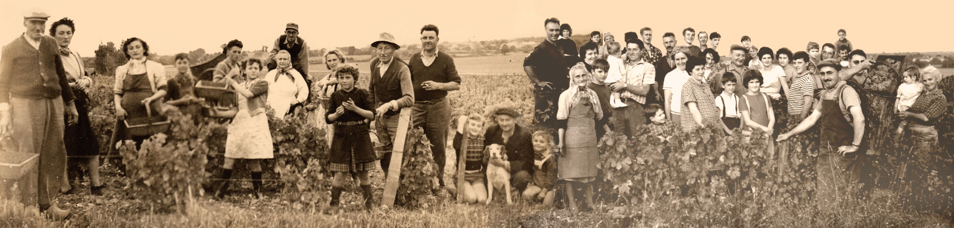 Famille Domaine Barillot Pouilly-Fumé